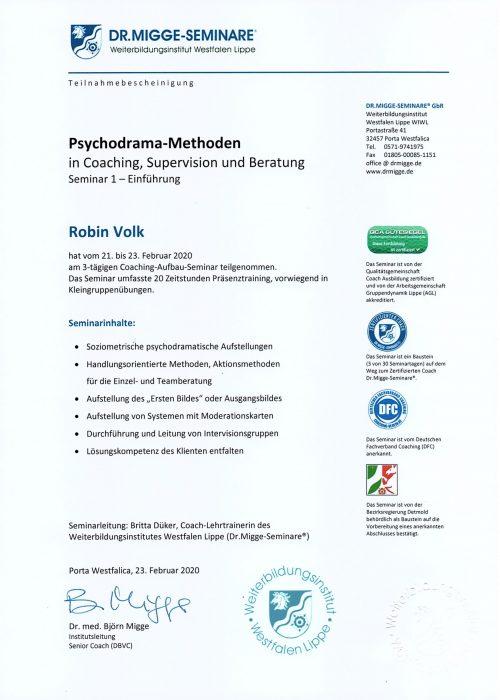 Seminar Psychodrama - 2020