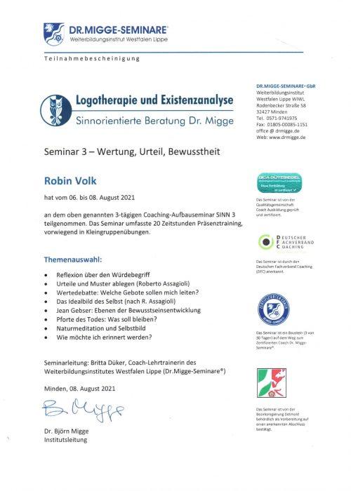 Seminar Sinn 3 - 2021